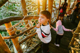 boy stops in golden light to look around the treehouse