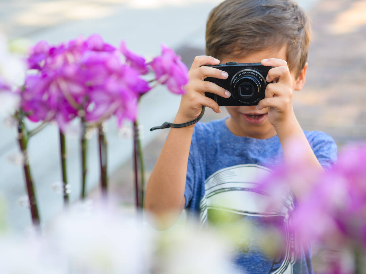 boy takes pictures of purple flowers